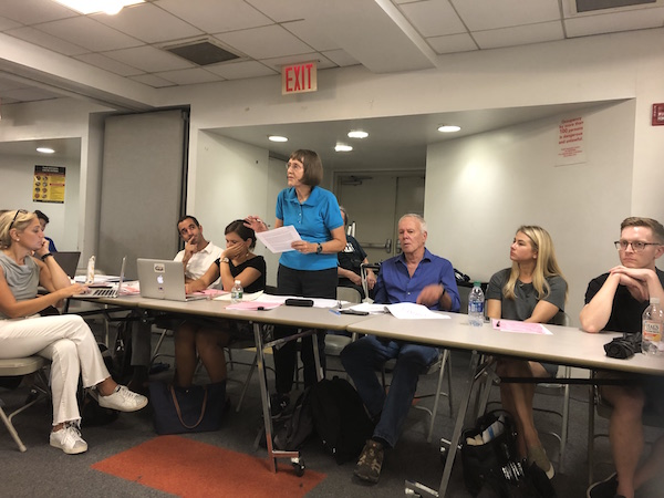 At CB4 Full Board Meeting, Passion to Preserve Fulton Houses, Cushman Row, Irish History